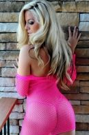Gisele Pink Fishnet Dress